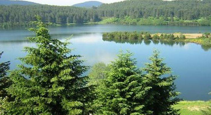 parco nazionale della Sila aree protette Konsumer
