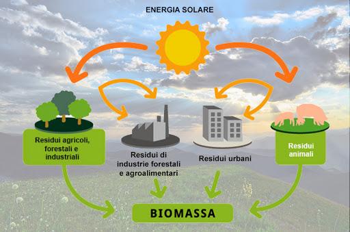 biomassa trento Konsumer